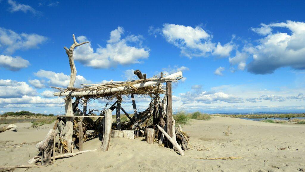 Bois flotté plage C Maillis