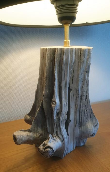 Vieux bois flotté